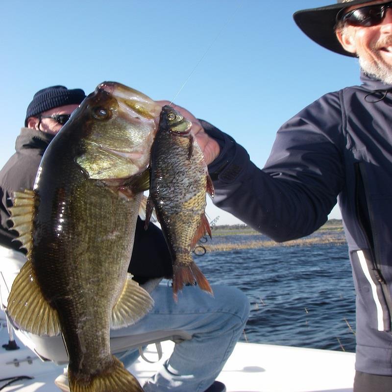 Lake toho tackle and fishing for Lake toho fishing guides